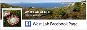 West Lab on Facebook